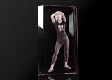 Фотография в стекле